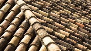 Ceramic Tile Roof Free Photo Clay Roof Slate Roof Tile Roof Free Image On