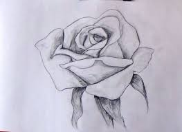 how to sketch a rose step by step tutorial for beginners youtube