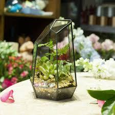 aliexpress com buy 19cm irregular geometric glass terrarium
