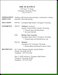 Resume Template For Teenager First Job Creative Ideas First Resume Template Skillful Examples For Job