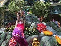 Bellagio Botanical Garden Mermaid Bellagio Conservatory Picture Of Bellagio Conservatory