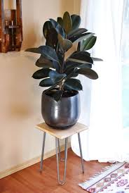 floor plant how to make your own simple and modern plant stand homey homey