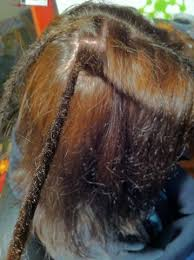 stages of dreadlocks pictures dreadlocks crochet method how to make dreads