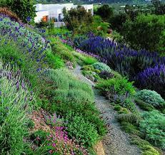 Landscaping Ideas For Hillside Backyard Landscaping Ideas For Slopes Best 25 Hillside Landscaping Ideas On