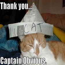 Thanks Captain Obvious Meme - thank you captain obvious memes 18 funny pictures