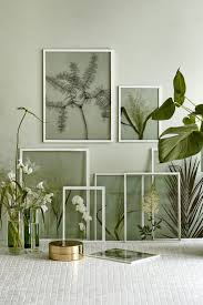framing dried plants and flowers in clear glass frames need more