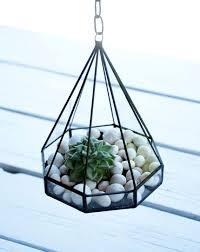 25 unique hanging glass terrarium ideas on pinterest hanging