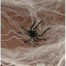 amazon com fun express halloween spider webs spiderwebs with