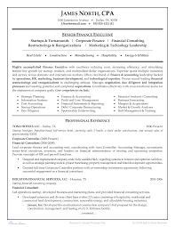 Construction Controller Resume Examples 免费financial Consultant Resume Example