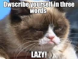 Grumpy Cat Meme Creator - lazy cat meme generator image memes at relatably com