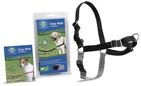 guide dog harness amazon com petsafe easy walk harness large black silver for