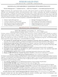 Executive Resume Format Template Sales Executive Resume Template Resume Sle 16 Senior Sales