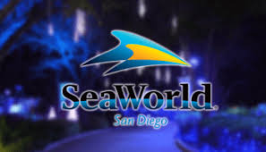 seaworld offers best deals of the year for blue friday and cyber