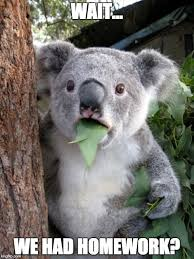 Meme Generator Koala - surprised koala meme wait we had homework image tagged in