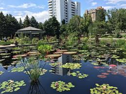 Denver Botanic Gardens Monet Pool In Context Denver Picture Of Denver Botanic