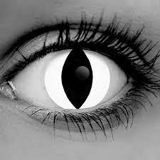 white cat theatrical contact lenses premium cls pair vampfangs
