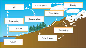 bbc gcse bitesize the hydrological cycle