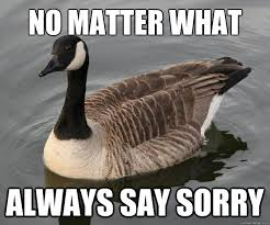 Goose Meme - 20 totally adorable duck memes you won t be able to resist