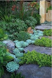 What Is Rock Dust For Gardens Where To Buy Rock Dust For Gardens How To Make Garden Rocks Shiny