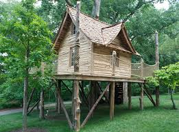 parke company providing healthy sturdy trees for tree houses in