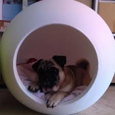 futuristic beds pug beds 10 amazing ideas for a pug bed