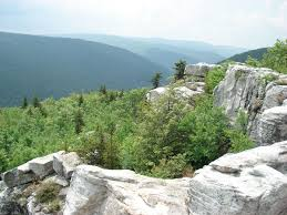 Virginia Mountains Map by Dolly Sods Wilderness Wikipedia