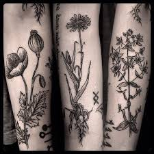related image tattooage pinterest botanical tattoo tattoo