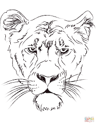 lioness head coloring page free printable coloring pages