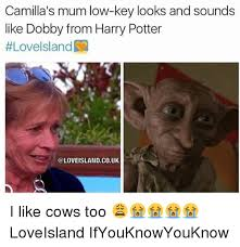 Meme Sounds - camilla s mum low key looks and sounds like dobby from harry potter