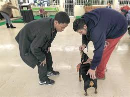 Dogs Helping Blind People 136 Best Great Stories About Animals Images On Pinterest Rescue