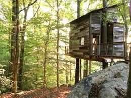 Treehouse Living Treetop Hideaways
