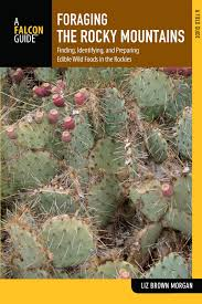 cheap native plants buy edible native plants of the rocky mountains in cheap price on