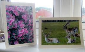 how to make and sell your own greeting cards toughnickel