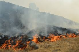 North Bay Fire Report by Officials Predict Fires Out By Friday News North Bay Bohemian