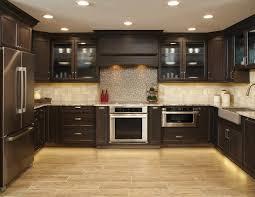 dark kitchen cabinets with glass doors exitallergy com