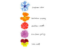 edible flowers the flower appreciation society s guide to edible flowers toast