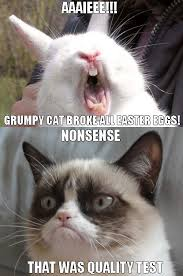 Grumpy Cat Meme Happy - grumpy cat meme survivor cat best of the funny meme