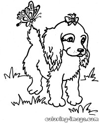 spaniel puppy with butterfly free coloring pages for kids