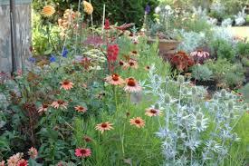 garden ideas round perennial garden design consideration for
