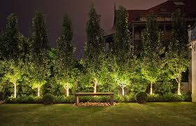 contemporary australian garden ornamental pear trees custom