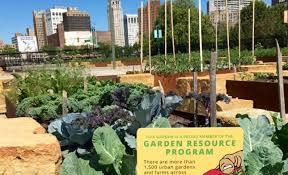 Urban Gardens Awesome Urban Gardening In Detroit Broke Stuart U0027s Website