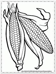 download corn cob coloring page ziho coloring