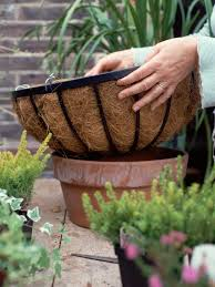plant a winter hanging basket hgtv