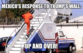Funny Car Memes - image tagged in bluth stair car memes funny memes donald trump trump
