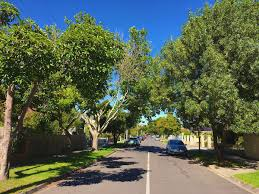 the 5 best melbourne suburbs for shared living rent com au rent
