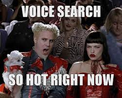 Search For Memes - 2017 the year of voice search netsearch digital marketing