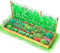 Raised Beds For Gardening Raised Bed Vegetable Garden Design Home Design Ideas
