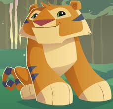 tiger animal jam wiki fandom powered wikia