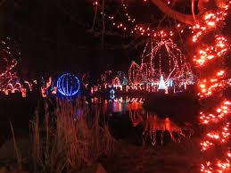 Zoo Lights Columbus Oh by Bronx Zoo Christmas Lights Christmas Lights Decoration