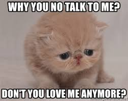 Why You No Love Me Meme - why you no talk to me don t you love me anymore super sad cat